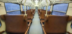 Koženka ve voze Bdmtee 281