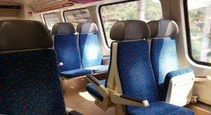 City Elefant train 071