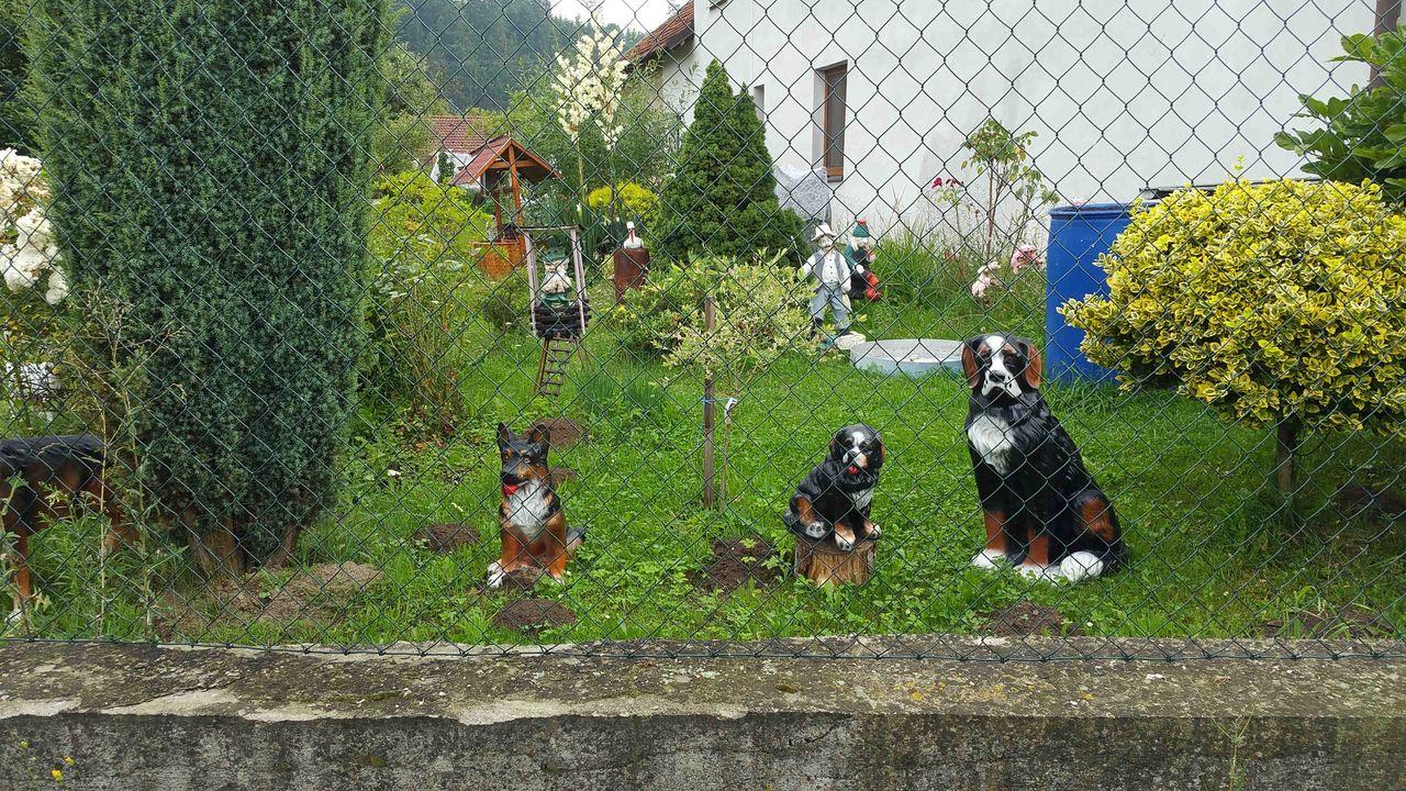 Zahrádka u domku v obci Březina