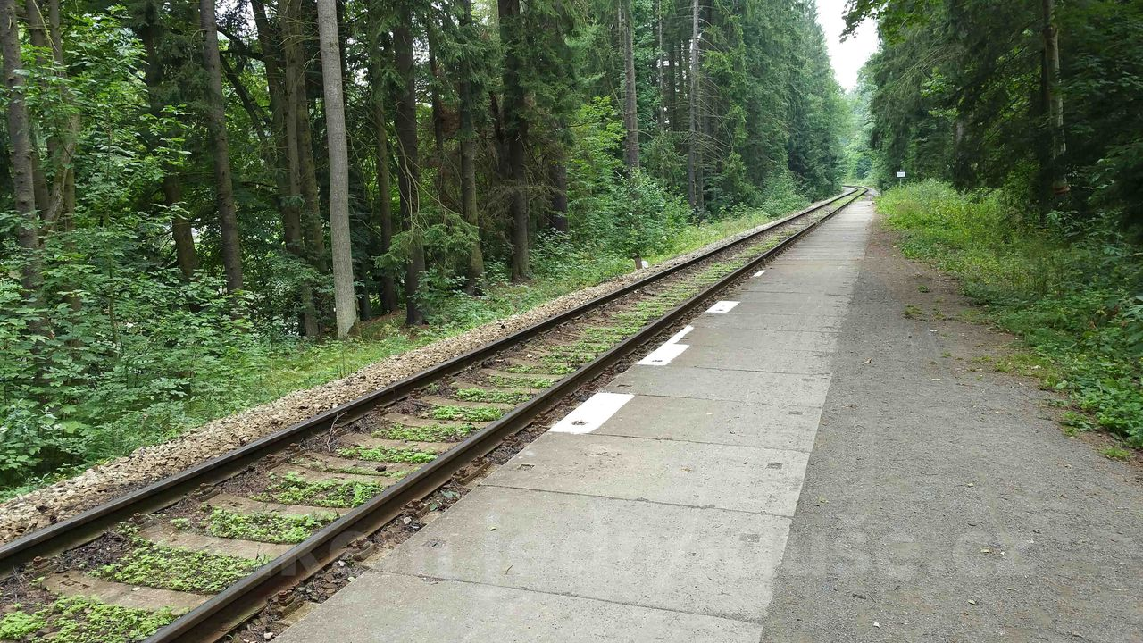 Železniční zastávka Stvořidla