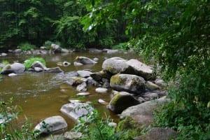 Řeka Sázava u Stvořidel