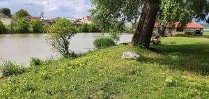 Velké Pavlovice a Zámecký rybník