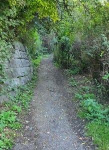 Cesta na vlak Malá Skála