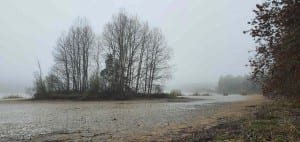 Matějovský rybník