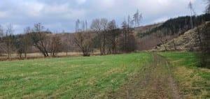 Cestou K. H. Borovského
