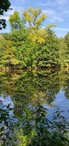 Výlet kolem řeky Jizery - Malá Skála